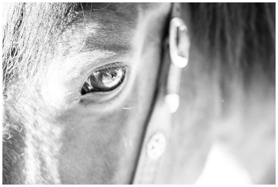 katrin-kind-portrait-fotografie-mit-pferd-muenchen-rosenheim_0017.jpg