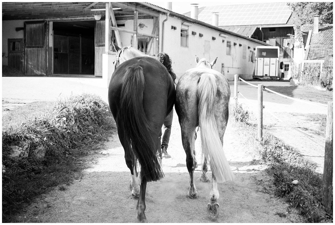 portraitfotos-mit-pferd-pferdefotograf-münchen-rosenheim-natürliche-fotos-katrin-kind-photography_0018.jpg