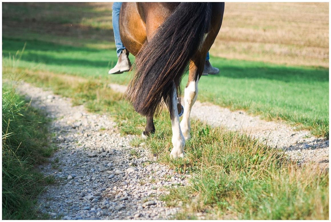 portraitfotos-mit-pferd-pferdefotograf-münchen-rosenheim-natürliche-fotos-katrin-kind-photography_0028.jpg