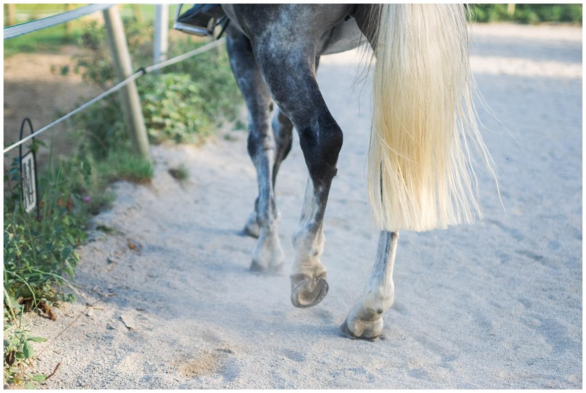 portraitfotos-mit-pferd-pferdefotograf-münchen-rosenheim-natürliche-fotos-katrin-kind-photography_0033.jpg