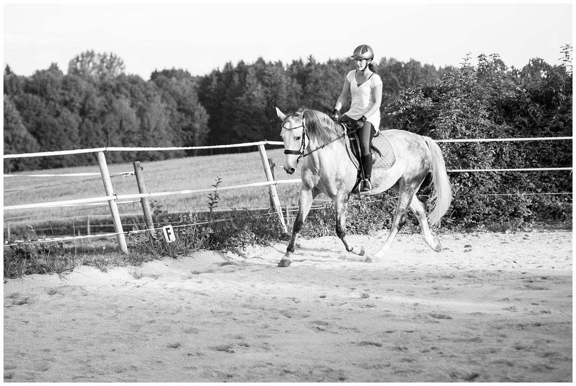 portraitfotos-mit-pferd-pferdefotograf-münchen-rosenheim-natürliche-fotos-katrin-kind-photography_0036.jpg
