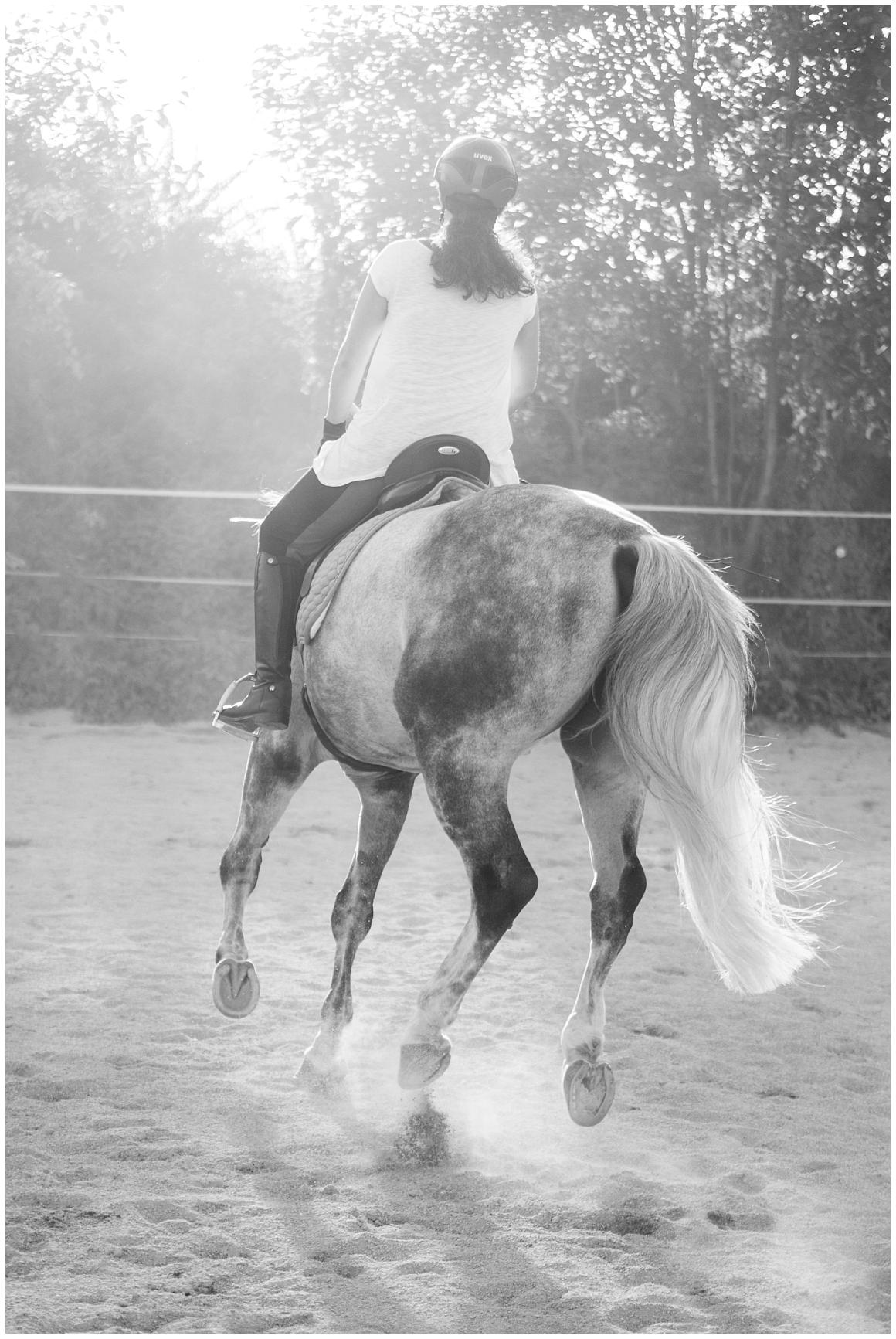 portraitfotos-mit-pferd-pferdefotograf-münchen-rosenheim-natürliche-fotos-katrin-kind-photography_0037.jpg