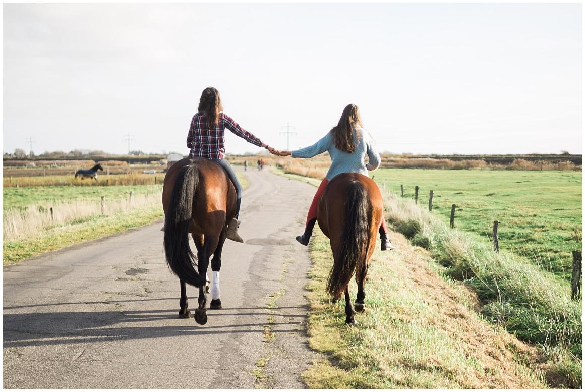 pferdefotograf-pferdeportrait-fotoshooting-mit-pferd-münchen-rosenheim-by-katrin-kind-photography_0018.jpg