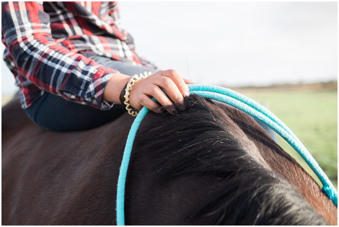pferdefotograf-pferdeportrait-fotoshooting-mit-pferd-münchen-rosenheim-by-katrin-kind-photography_0022.jpg