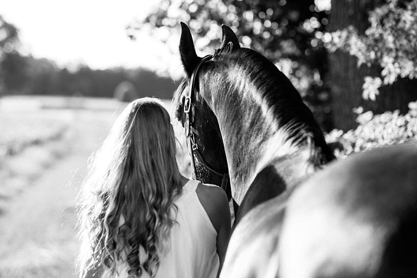 pferdefotograf-pferdeportrait-equine-horse-photographer-fotoshooting-mit-pferd-natürliche-portraitfotos-portraitfotograf-münchen-rosenheim-by-katrin-kind-photography_0021.jpg