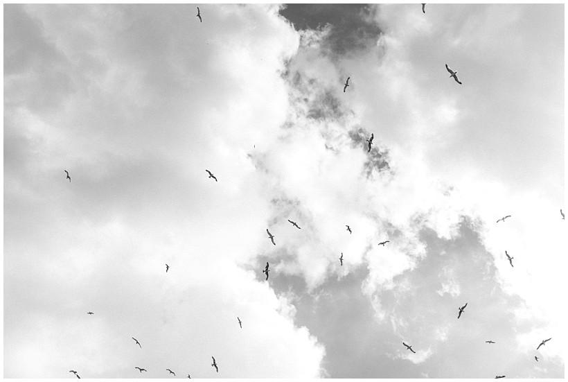 venedig-venice-städtereise-ausflug-trip-katrin-kind-photography_0021.jpg
